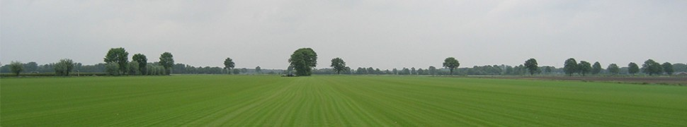 Graszoden veld 960px